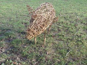 pic of willow pig for workshops