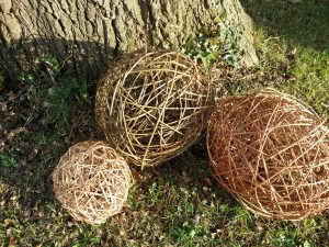 picture of wiloow balls , round and oval