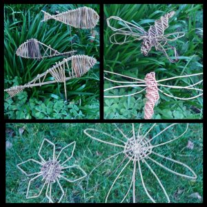 compilation pic willow fish, flower, dragonfly