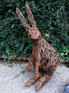 photo of willow hare sitting on path