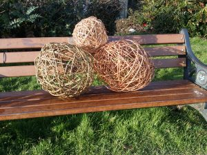 photo of willow balls made by students on park bench